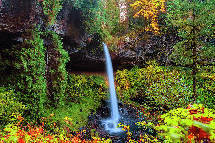 Autumn at North Falls by Dee Browning
