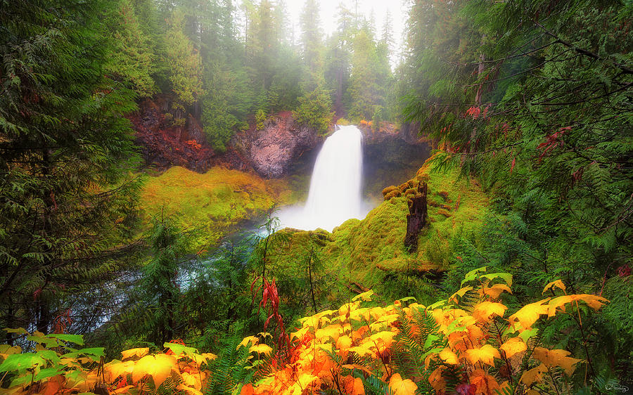 Autumn at Sahalie Falls by Dee Browning