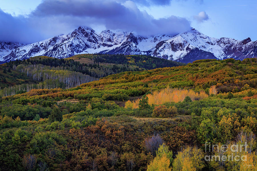 AUTUMN AT THE DALLAS DIVIDE by Doug Sturgess