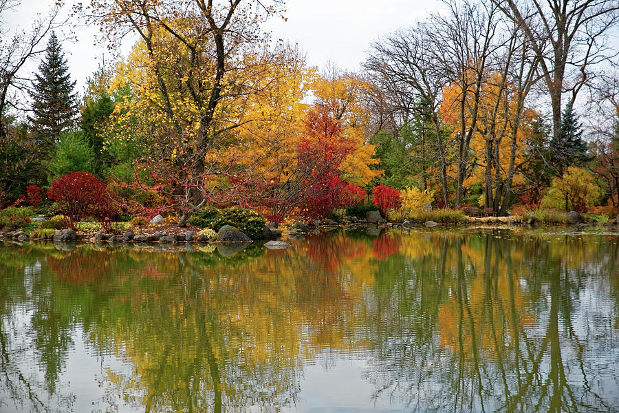 Autumn at the Garden by Peter Ponzio