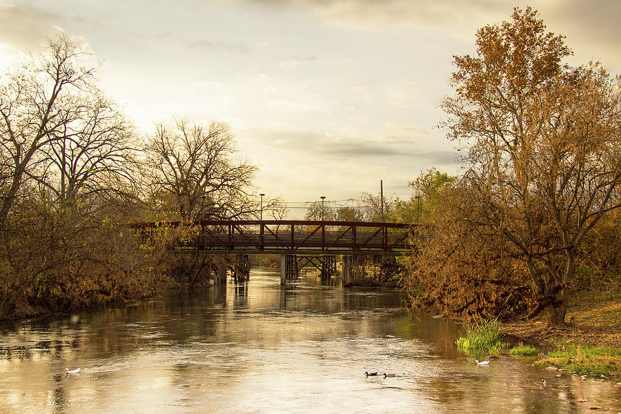 Autumn at the San Marcos River by Amy Sorvillo
