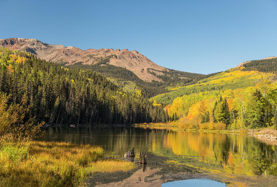 Autumn at Woods Lake by Gordon Ripley