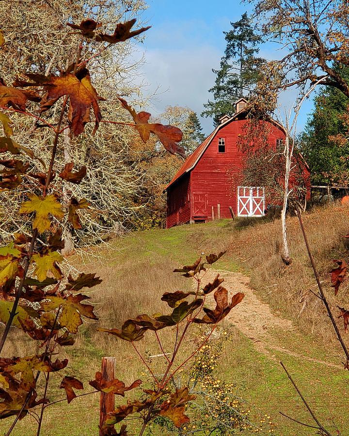 Autumn Barn by Suzy Piatt