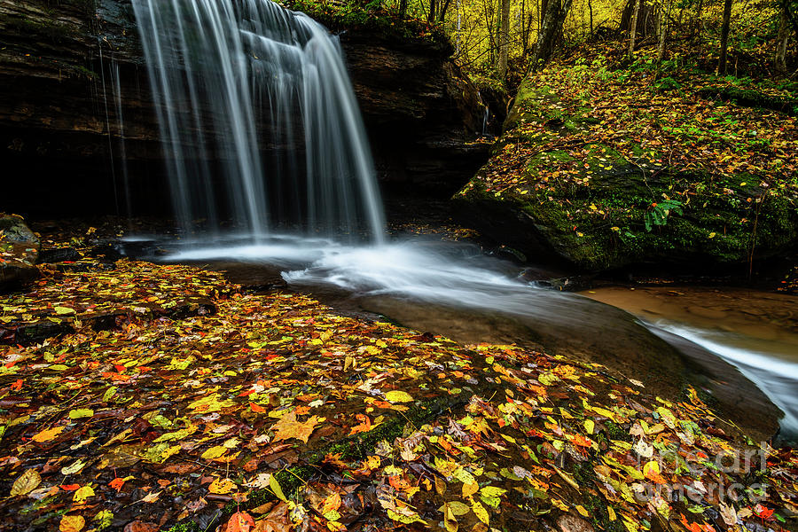 Autumn Barton Mill Run Waterfall  by Thomas R Fletcher