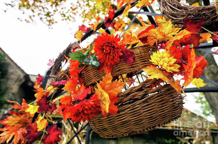 Autumn Basket at the New Jersey Botanical Garden by John Rizzuto