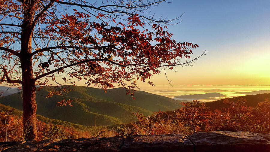 Autumn Blue Ridge Dawn by Lara Ellis