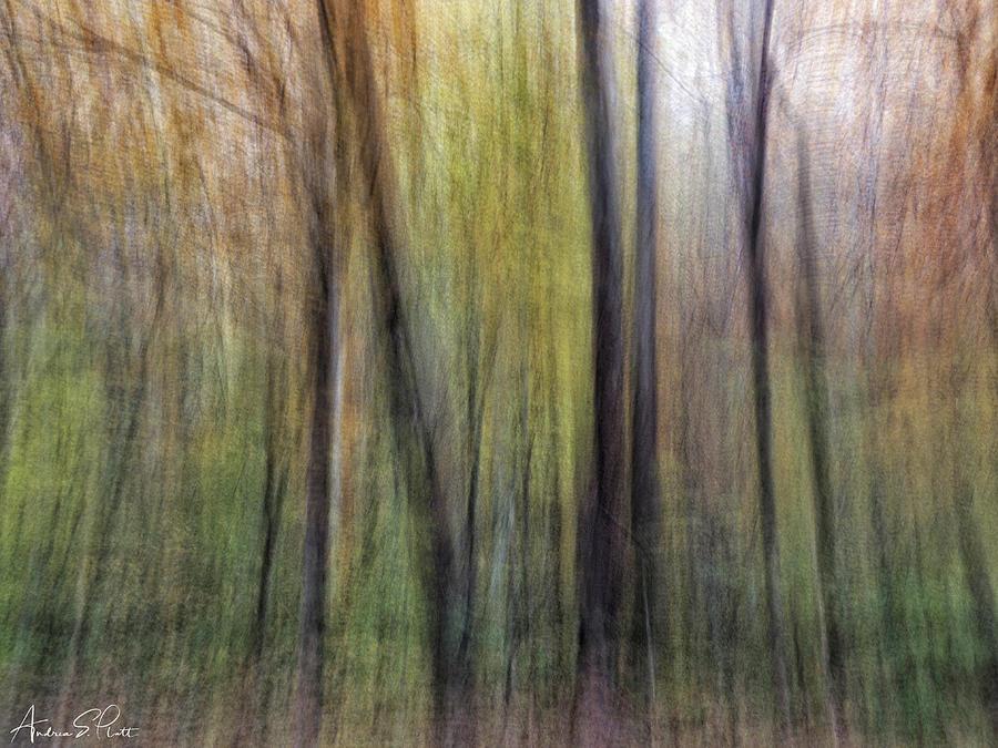 Autumn Blur by Andrea Platt