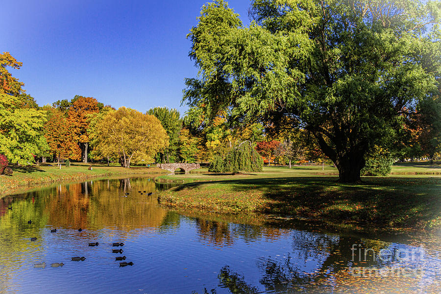 Autumn by the Pond by William Norton