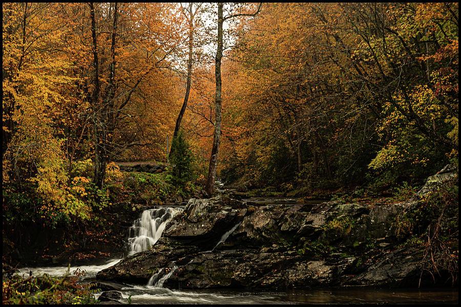 Autumn Cascades on the Nantahala River 2 by Kelly Kennon