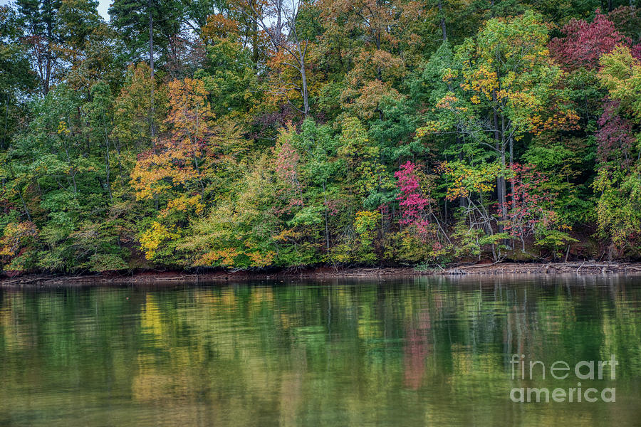 Autumn Color at Lake Norman State Park by Amy Dundon