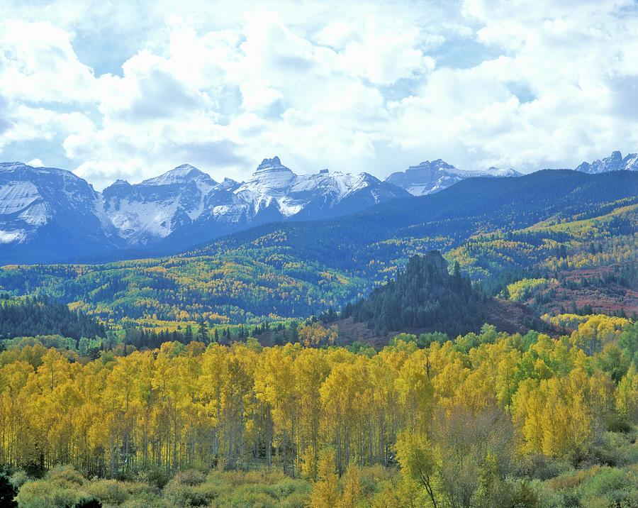 Autumn Colors In The Sneffels Mountain Photograph by Visionsofamerica/joe Sohm