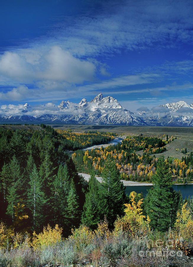 autumn colors snake river overlook grand tetons national park wyoming by Dave Welling