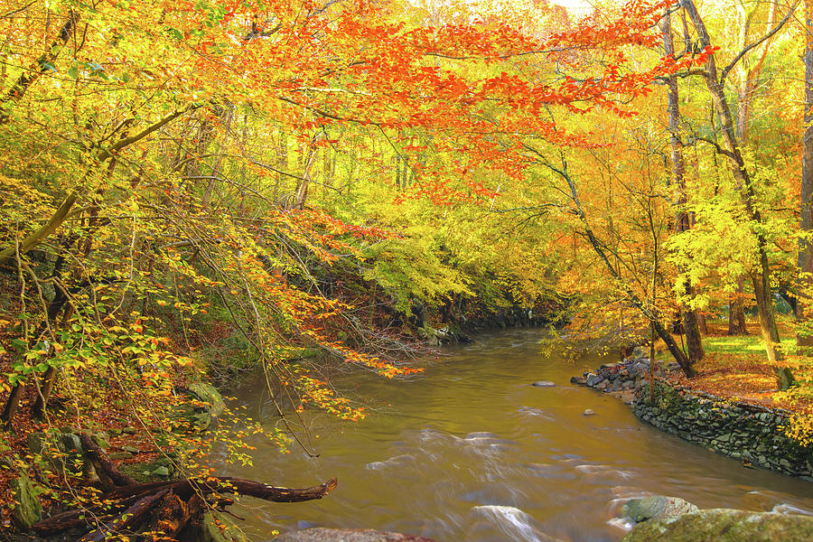 Autumn Colors Upstream on Rock Creek by Jeff at JSJ Photography