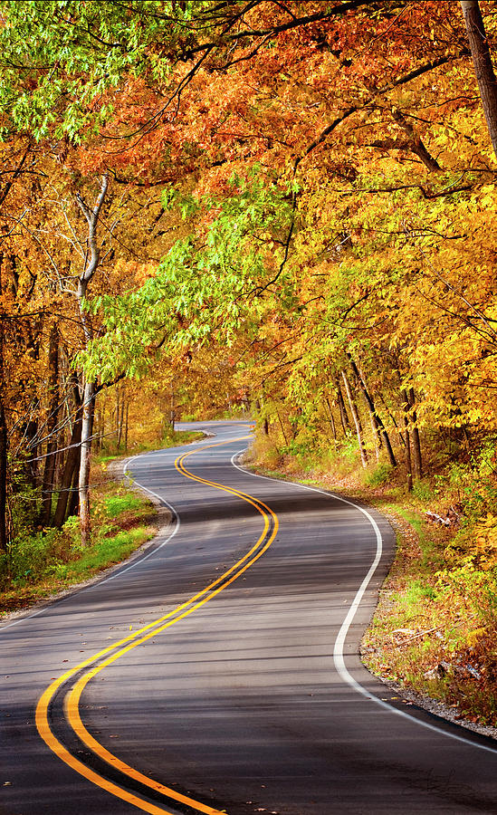 Autumn Country Road by Jill Love Photo Art