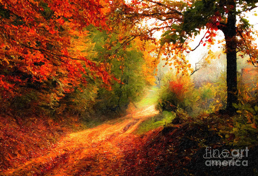 Autumn Country Walk by Chris Armytage