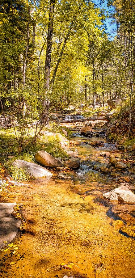 Fall Photograph - Autumn Creek by Bonny Puckett