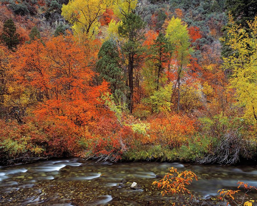 Autumn Photograph - Autumn Creek by Leland D Howard