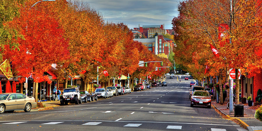 Autumn Day in Pullman by David Patterson