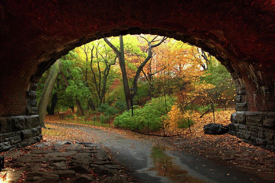 Autumn Fall In Central Park Photograph by Ahmad Abdul-karim Photography