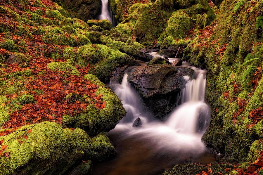 Autumn Falls Photograph