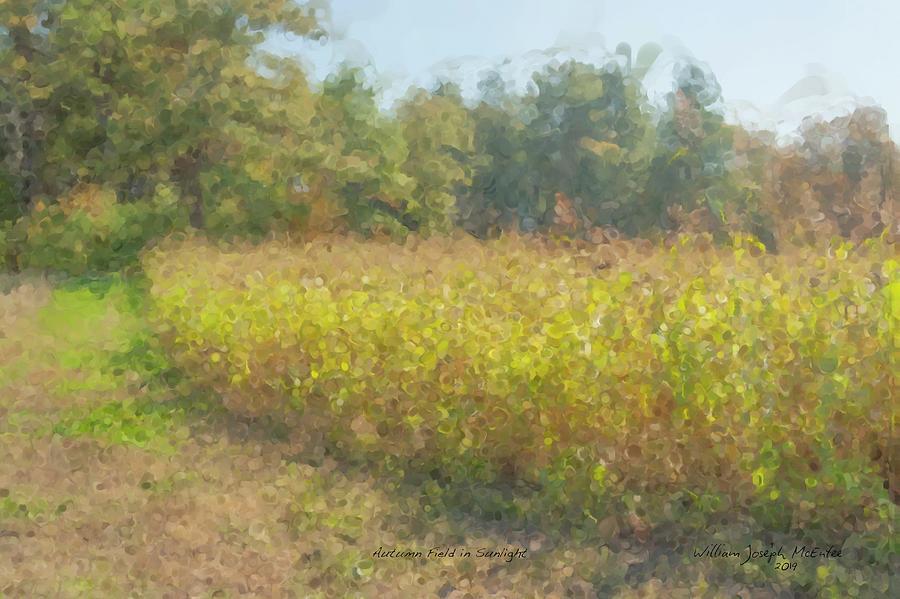 Autumn Field in Sunlight by Bill McEntee