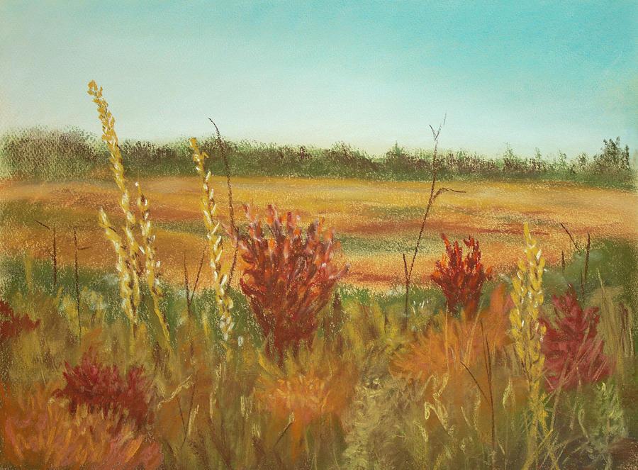 Autumn Fields by Dorothy Riley