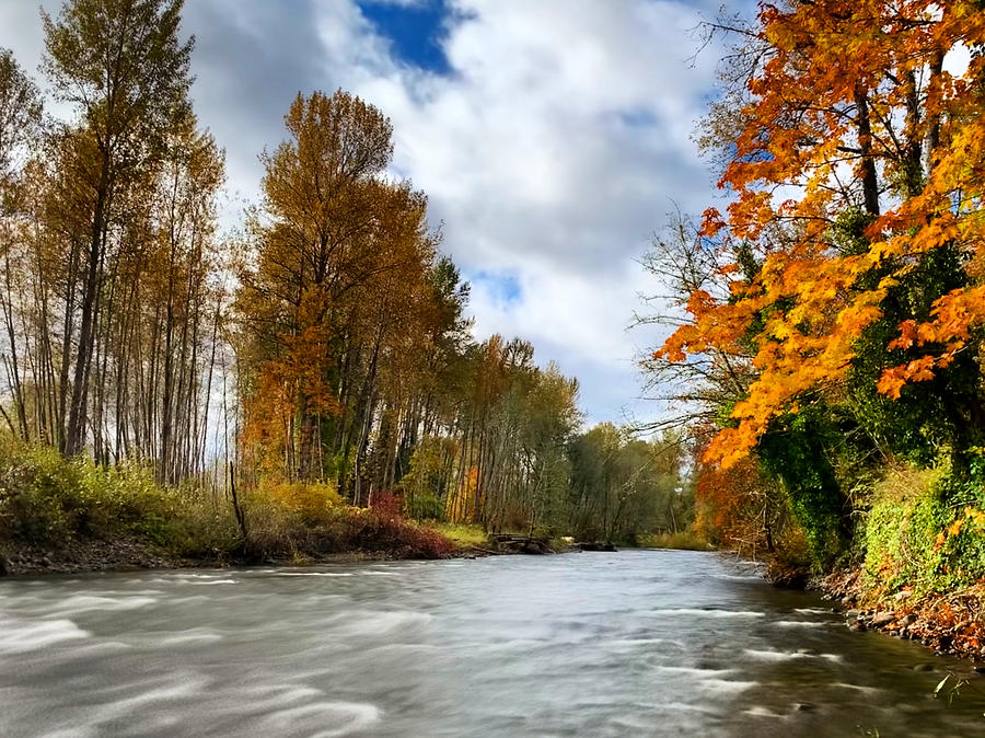Autumn Flow by Brian Eberly