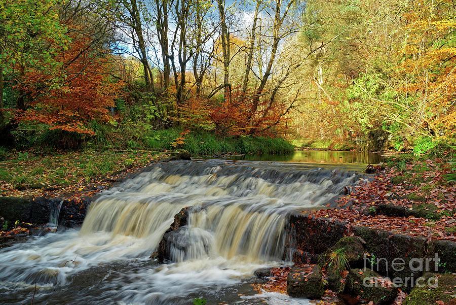 Autumn Flow by David Birchall