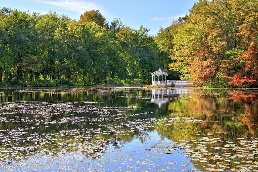 Autumn Photograph - Autumn Gazebo by Luke Moore