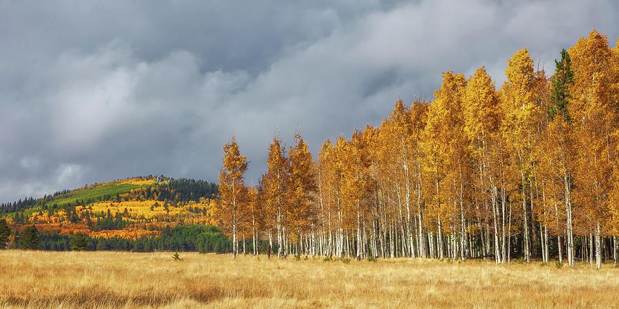 Autumn Glory by Rick Furmanek