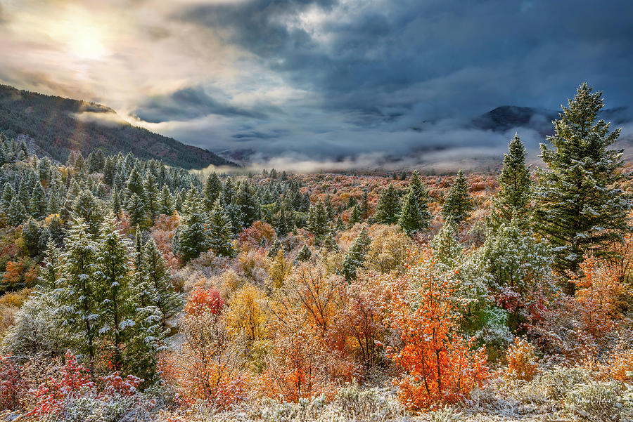 Autumn Grandeur by Leland D Howard