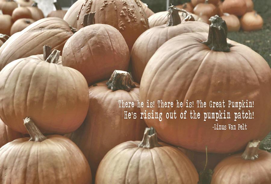 Pumpkin Photograph - Autumn Harvest Quote by JAMART Photography