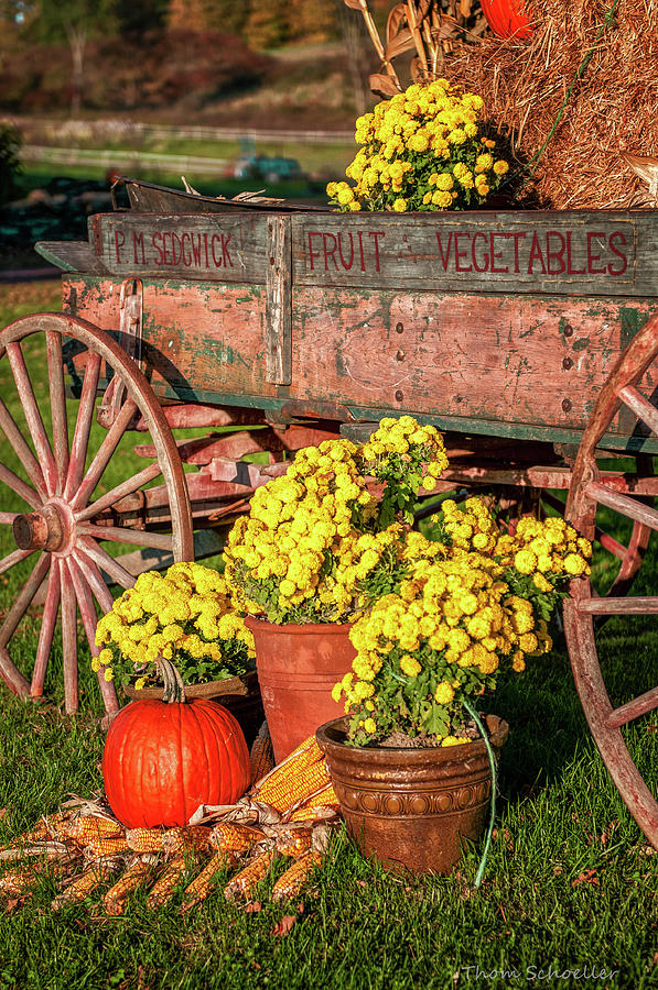 Autumn Harvest Vintage Wagon by T-S Fine Art Landscape Photography