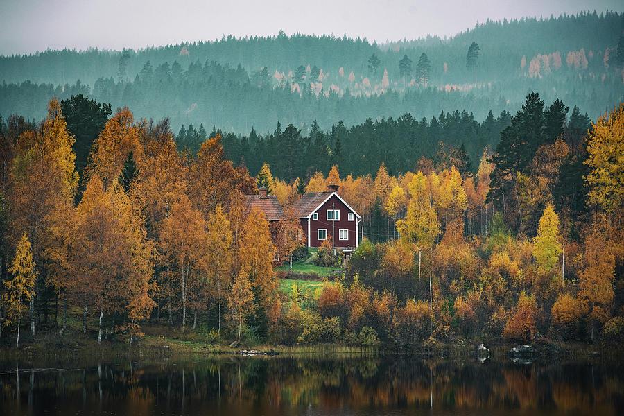 Autumn House by George Grigoriadis