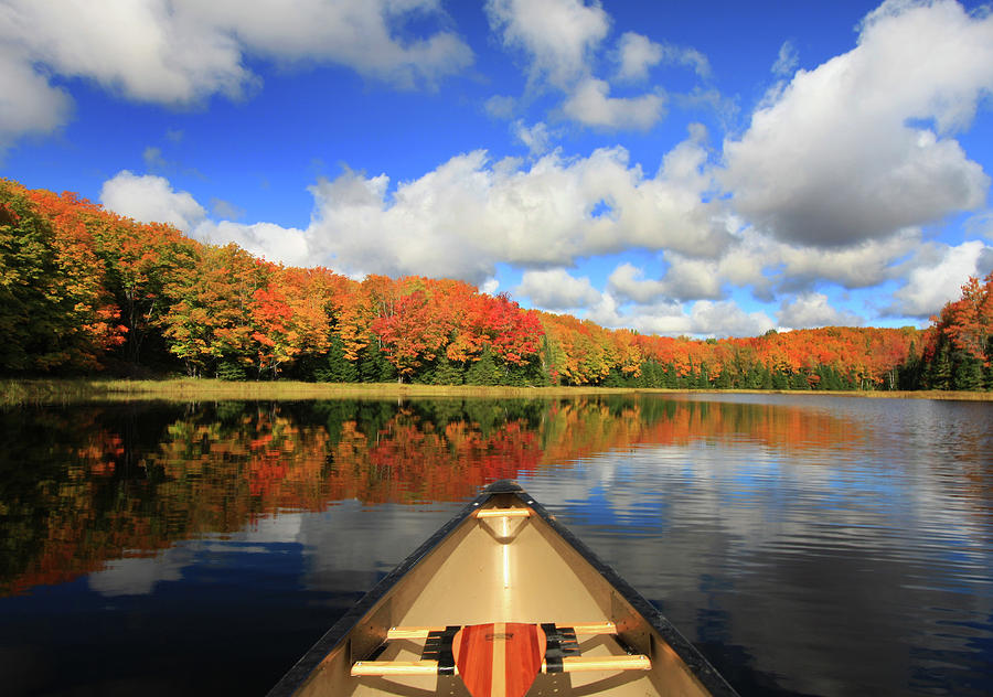 Autumn In A Canoe Photograph by Photos By Michael Crowley