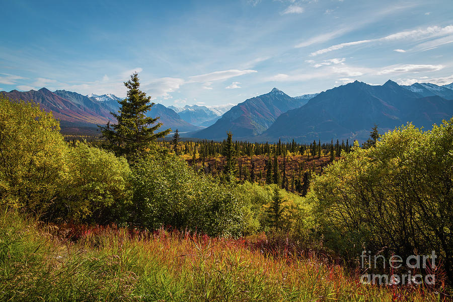 Autumn in Alaska by Eva Lechner