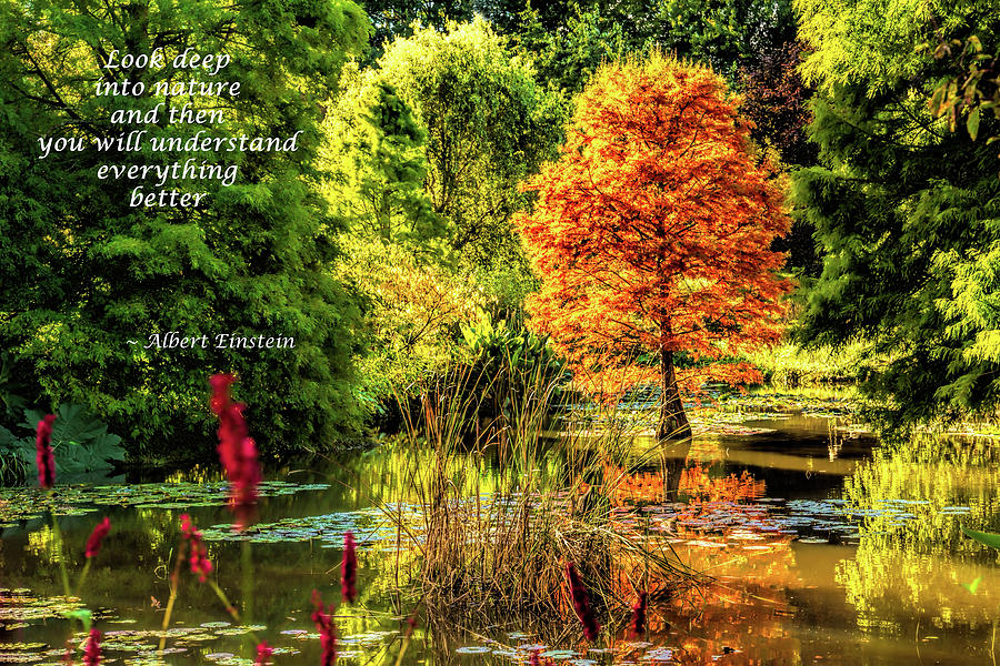 Autumn in England by Gaye Bentham