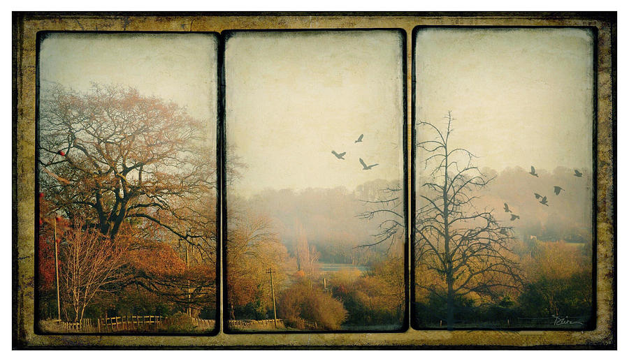 Autumn in England by Peggy Dietz
