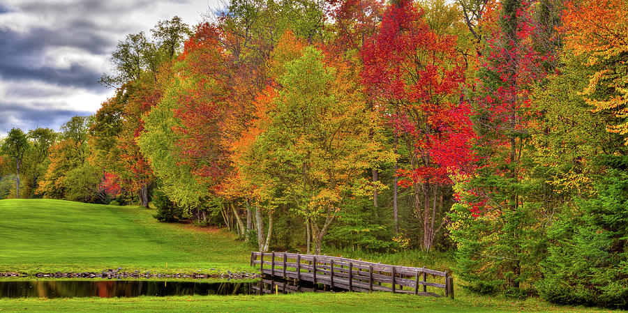 Autumn in New York by David Patterson