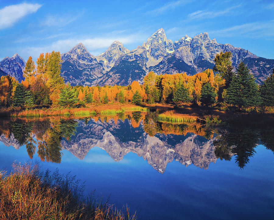 Autumn In The Snake River Valley Grand Photograph by Ron thomas