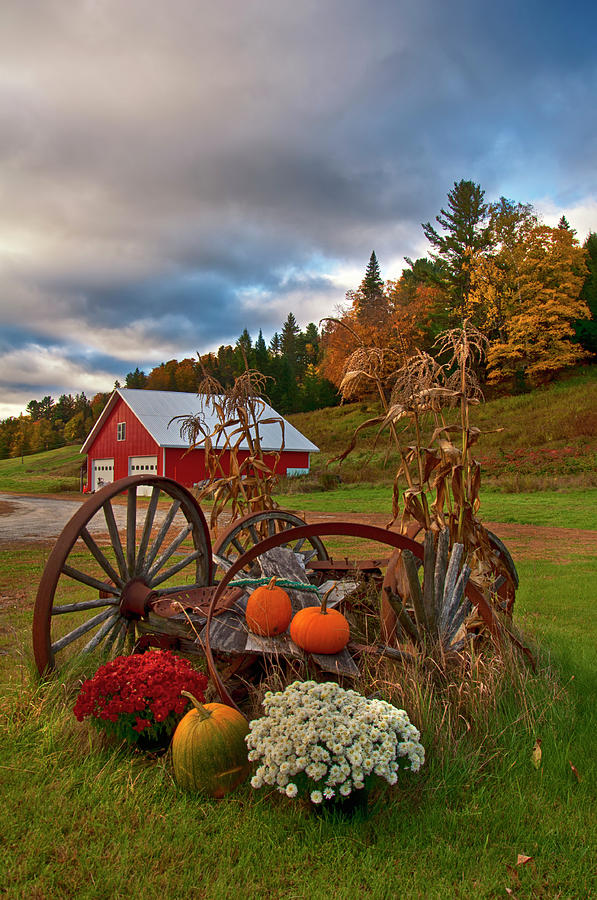 Autumn in Vermont Country Scene by Joann Vitali