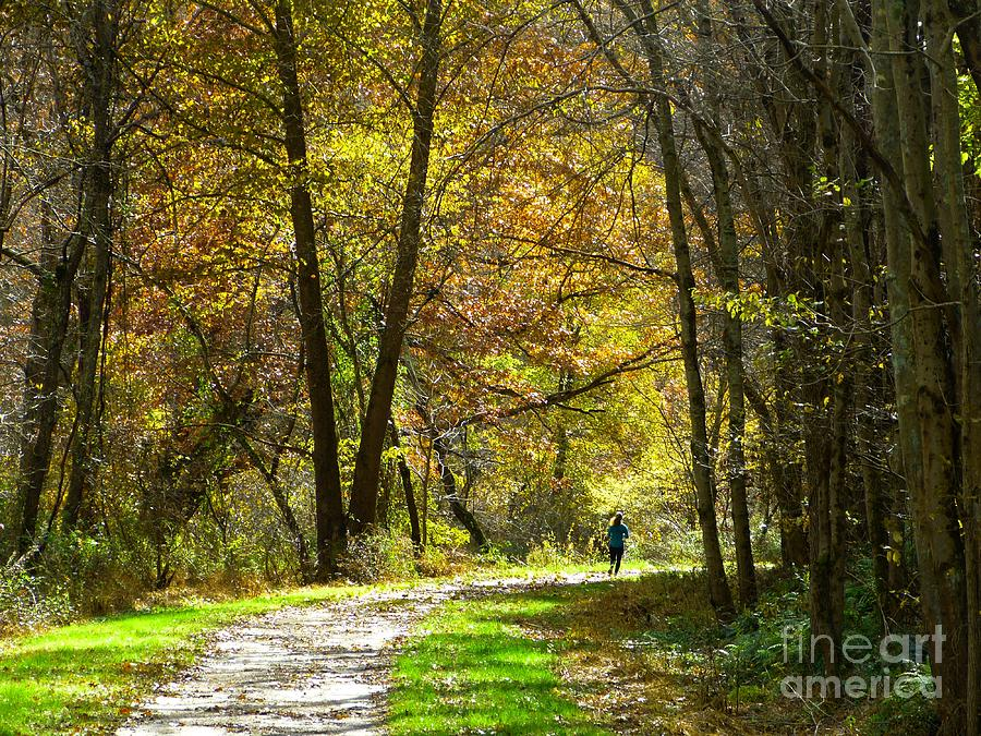 Autumn Jogger by Donald C Morgan