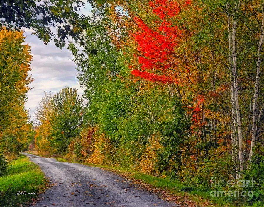 Autumn Lane by Carol Randall