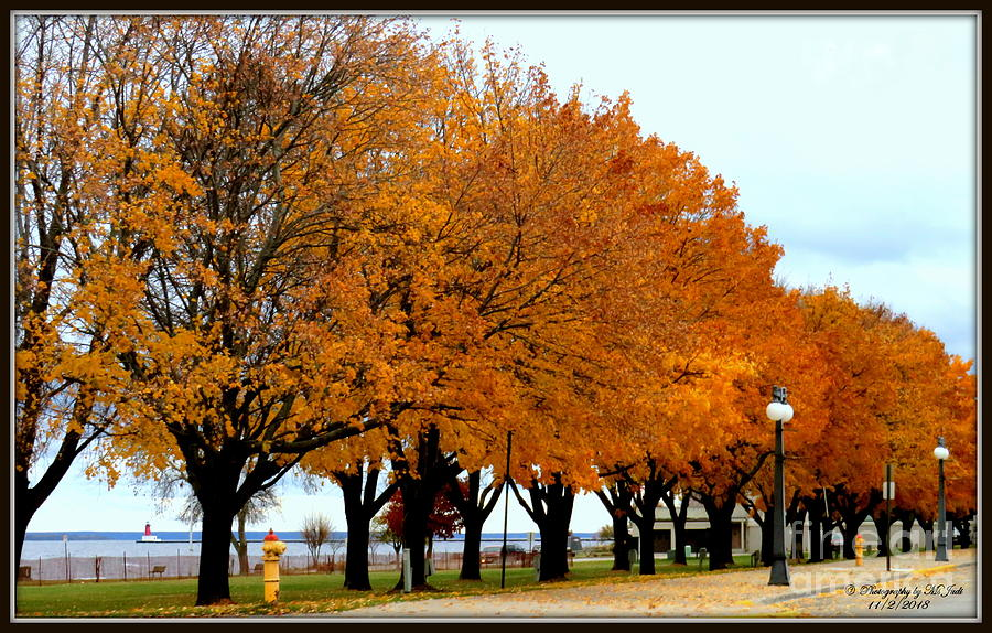 Autumn leaves in Menominee Michigan by Ms Judi