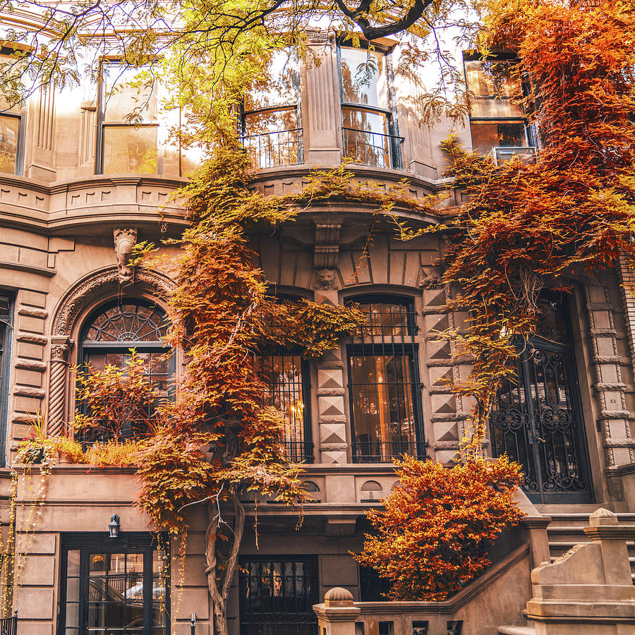 Autumn Leaves New York City Photograph By Vivienne Gucwa