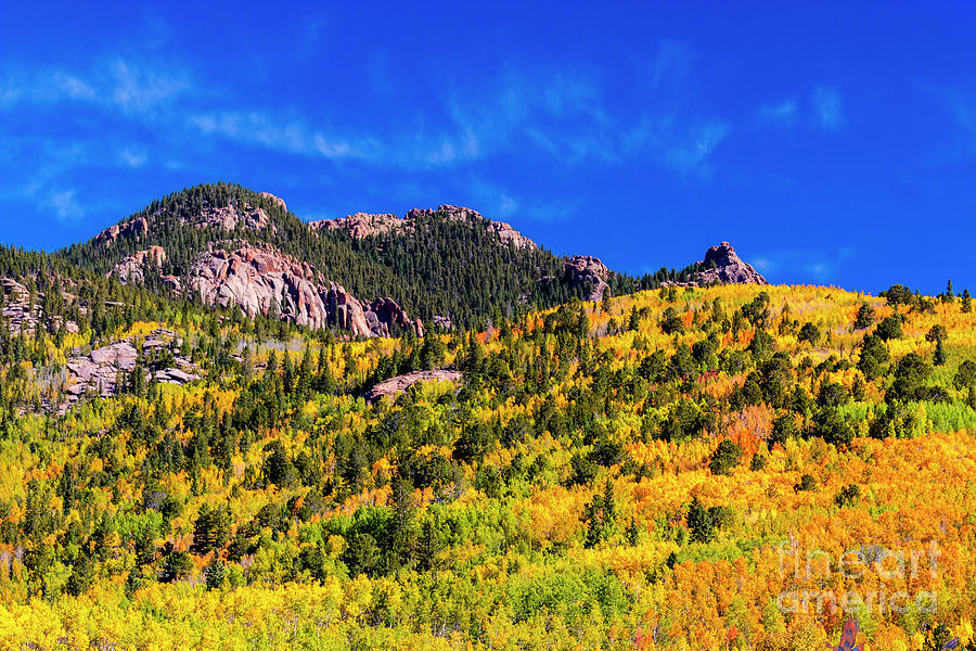 Autumn Leaves On North Face Of Pikes Peak Photograph