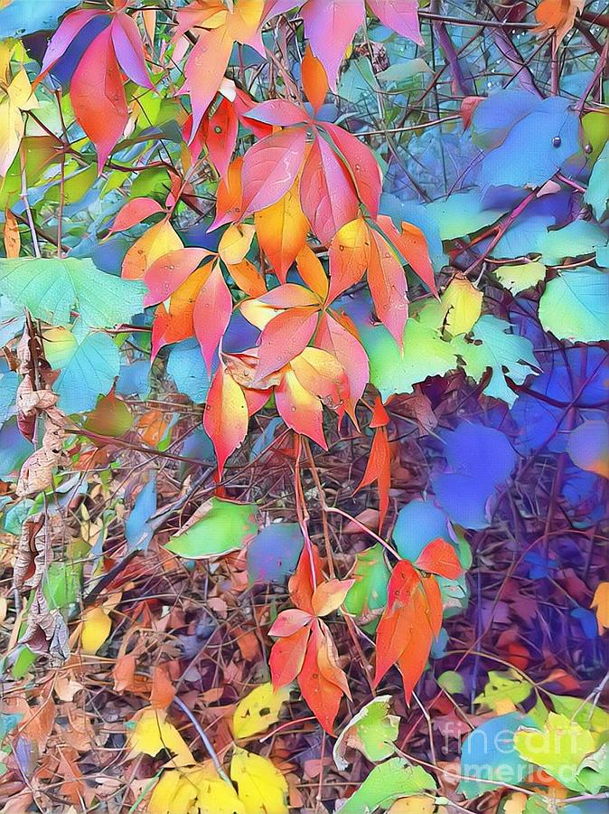 Autumn leaves  by Paola Baroni
