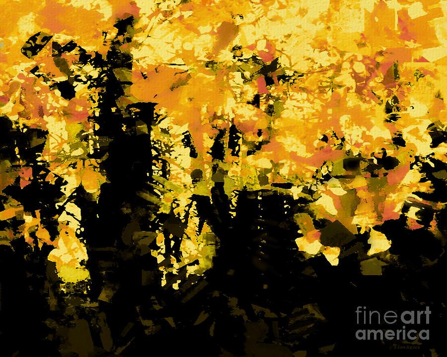 Autumn Light by Tim Richards