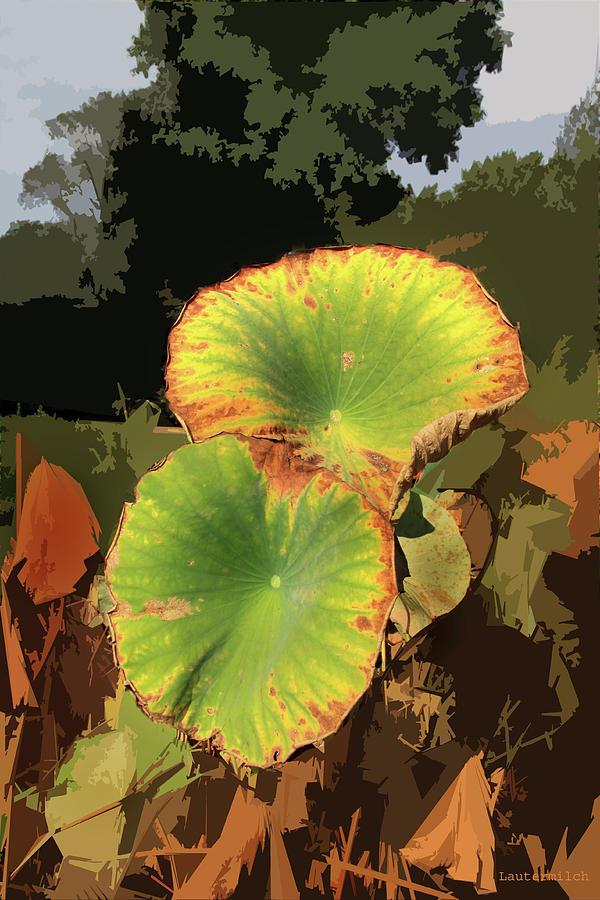 Autumn Photograph - Autumn Lotus Leaves by John Lautermilch