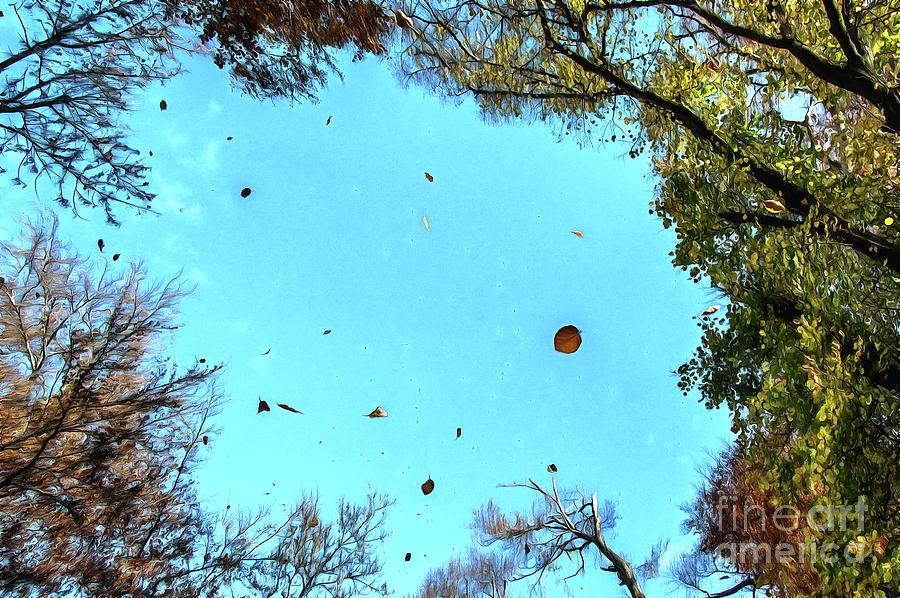 Autumn mood by Odon Czintos